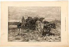 Ploughing On The Sussex Downs (1).