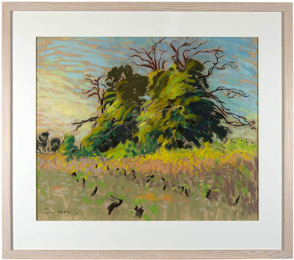https://www.midhurstgallery.co.uk/upload_file/product_images/PN61_Vineyard-Landscape_6000924.jpg