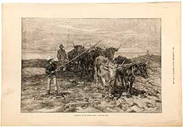 ploughing-on-the-sussex-downs-1